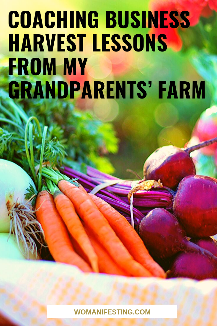 Coaching Business Harvest Lessons from My Grandparents' Farm