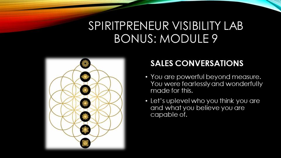 Spiritpreneur Visibility Mindset Module 9