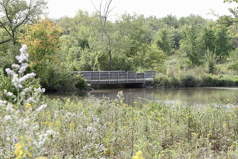 Brookdale Conservation Area