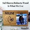 Shorea wood title