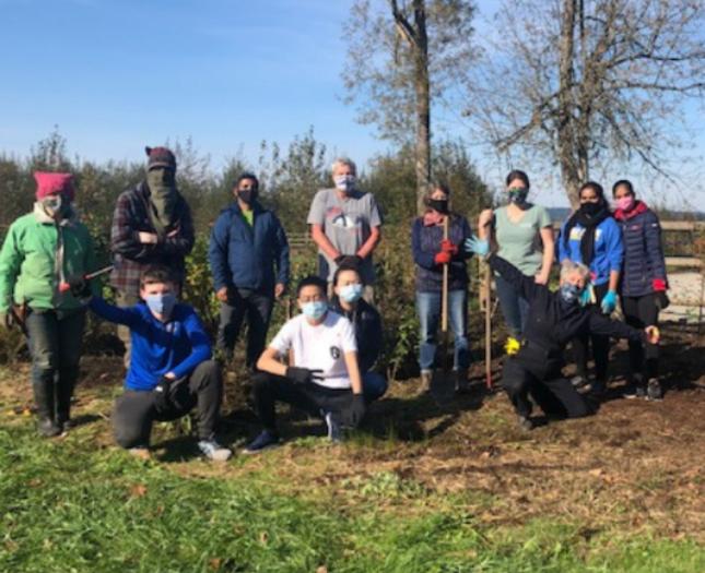 Volunteers mulching and planting native plants at Lake Sammamish State Park