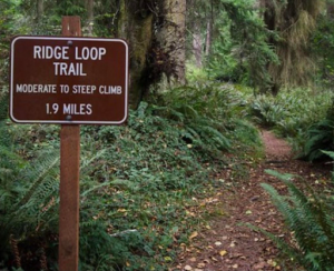 Trail signs at South Whidbey State Park