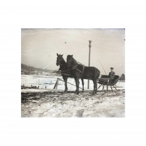 Horse Drawn Sleigh Old Photograph