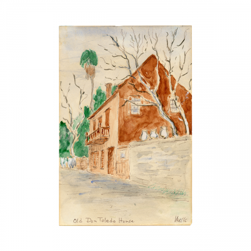 Old Don Toledo House Painting