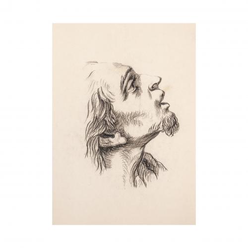 Profile Head Portrait Drawing