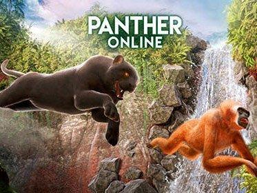 Hra Panther Online