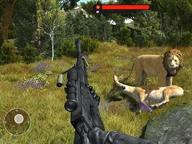 Wild animal jungle hunt