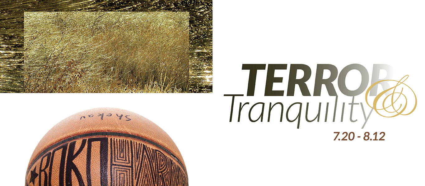 Terror & Tranquility gallery graphic. July 20th thru August 8th