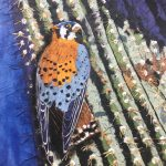 Kestral by Judith Bergquist. Artwork from Wax Paper, Mixed Media and Encaustic Art exhibition.