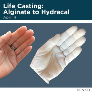 Life Casting: Alginate to Hydracal, April 4