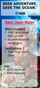 Basic Open Water Bundle