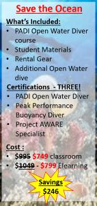 Save the Ocean Bundle