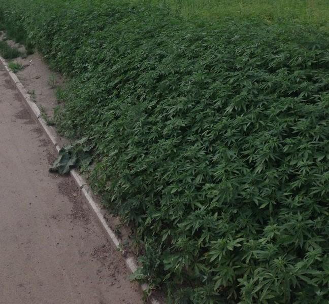 Krasnoyarsk03