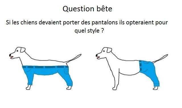 chien-pantalon