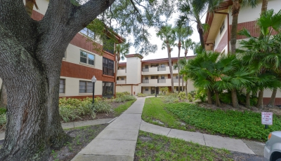 2650 Countryside Blvd #F204 Clearwater FL 33761 – 2 Bed / 2 Bath – $114,900 3D Model
