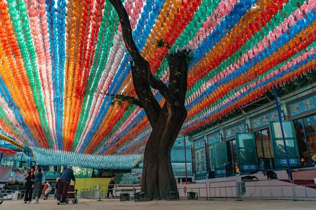 Hundreds of colorful lanterns hang above a tall tree.