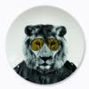 wild dinning lion