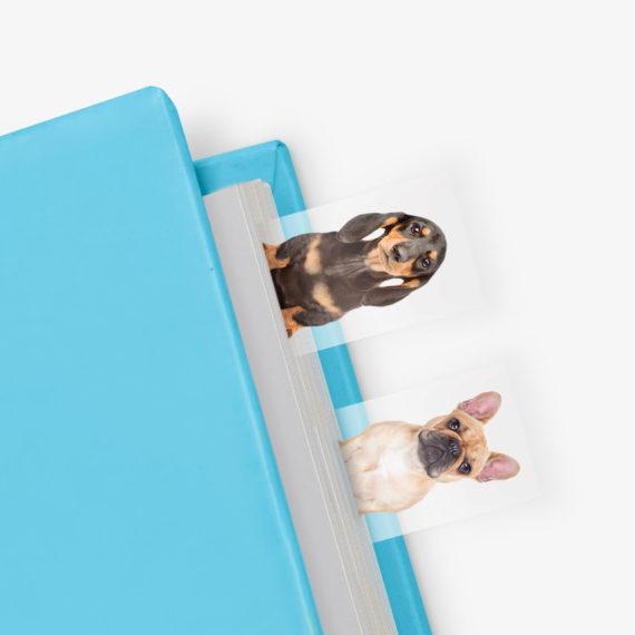 Dog in a Book