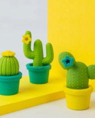 m16104_Cactus_Erasers