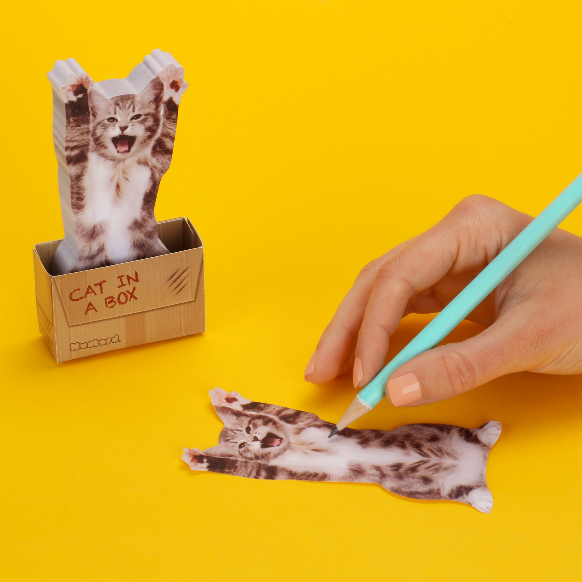 Cat in A Box justmustard.com