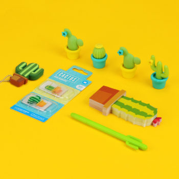 cactus gift stationery set