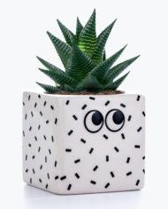 M12052A_Googly_Eyes_Plant_Pot_1