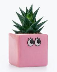 M12052B_Googly_Eyes_Plant_Pot_Pink_1