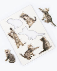 M16201_Action Cat_Magnets_1