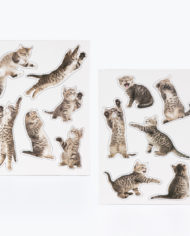 M16201_Action Cat_Magnets_2