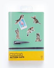 M16201_Action Cat_Magnets_5