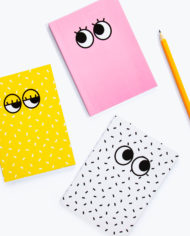 M16210_Googly-Eyes_Notebook-Set_1.2