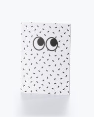 M16210_Googly Eyes_Notebook Set_1A