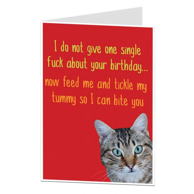 Offensive Cat Birthday Card