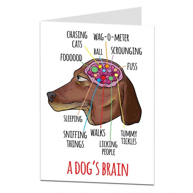 Dogs Brain Birthday Card
