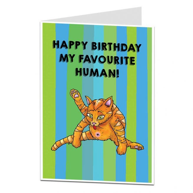 Favourite Human Cat Birthday Card
