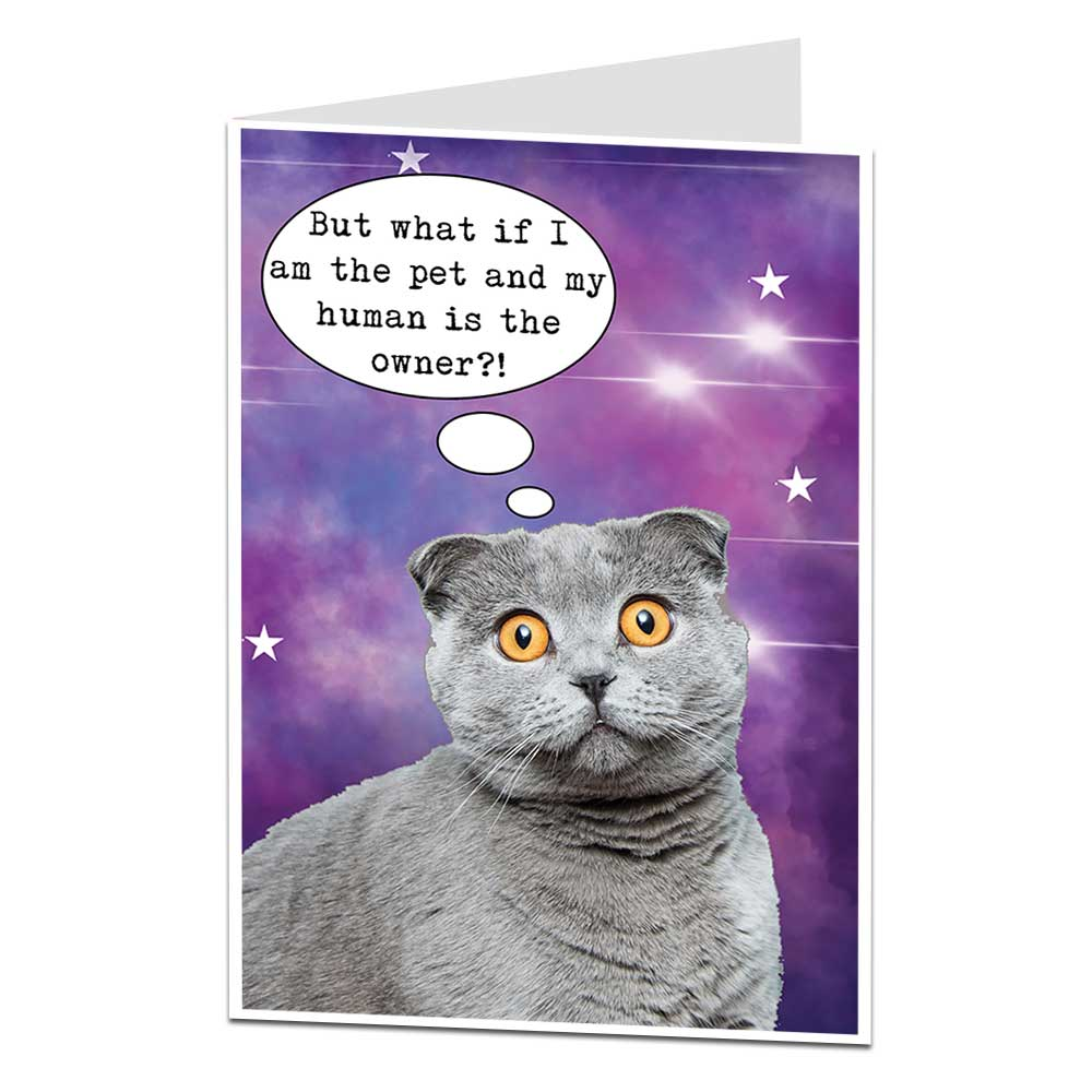 But What If I Am The Pet Cat Birthday Card