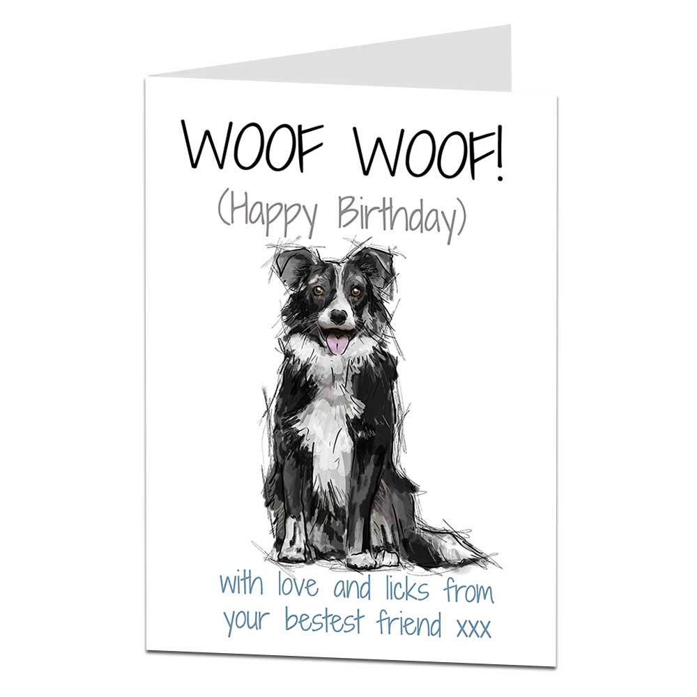 BEARDED COLLIE AND BORDER COLLIE WITH SHEEP DOG  BIRTHDAY GREETINGS NOTE CARD