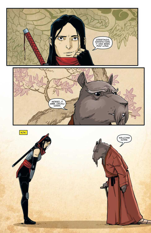 Karai meets with Splinter