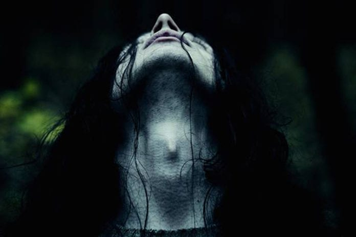 lords of chaos forest
