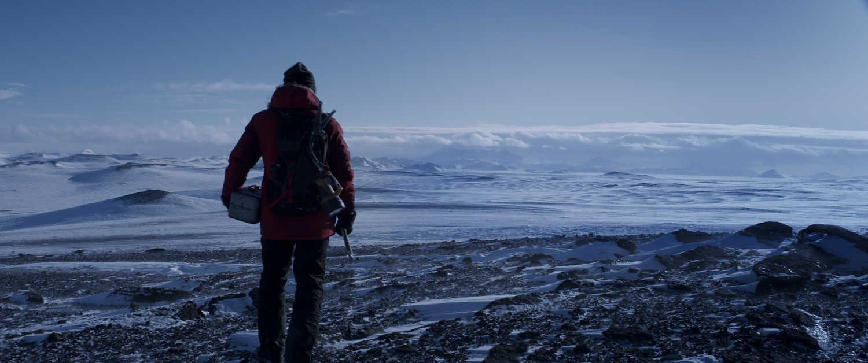 arctic plains
