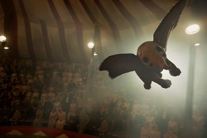 dumbo flight
