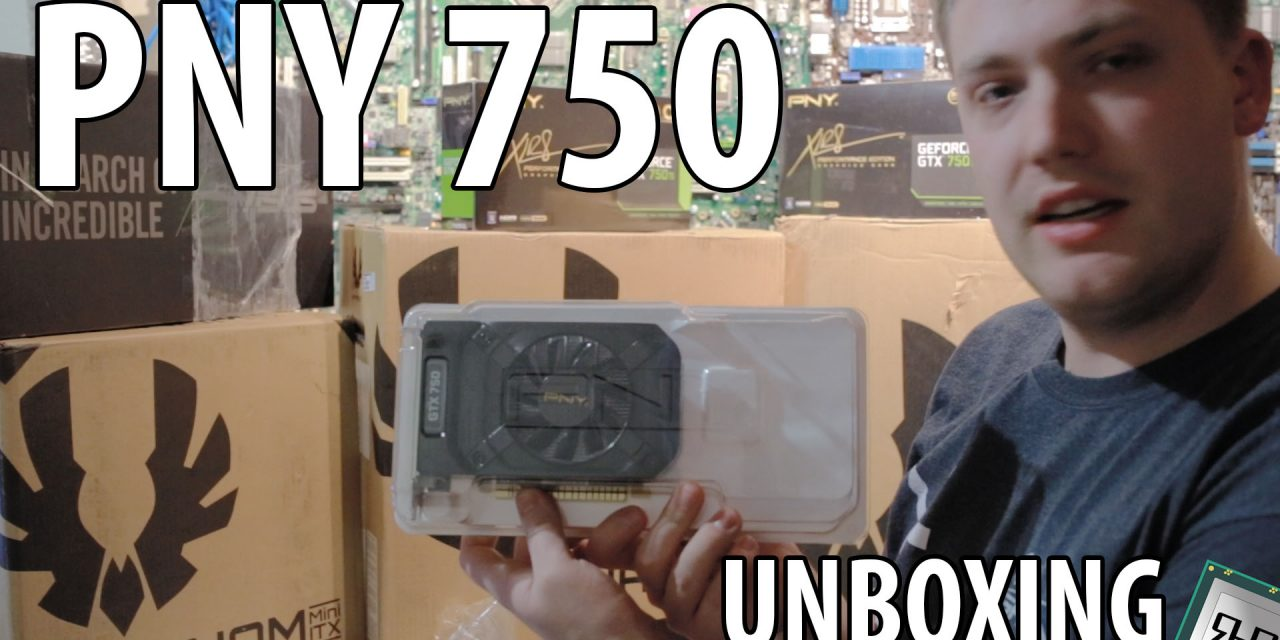 PNY GTX 750 1GB XLR8