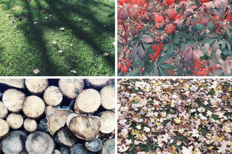 StyleBee - October Vibes