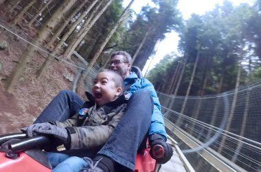 m-zipworld-fforest-coaster-ft
