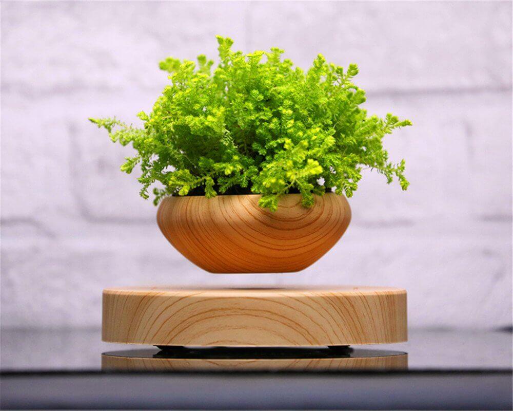 airsai-plant