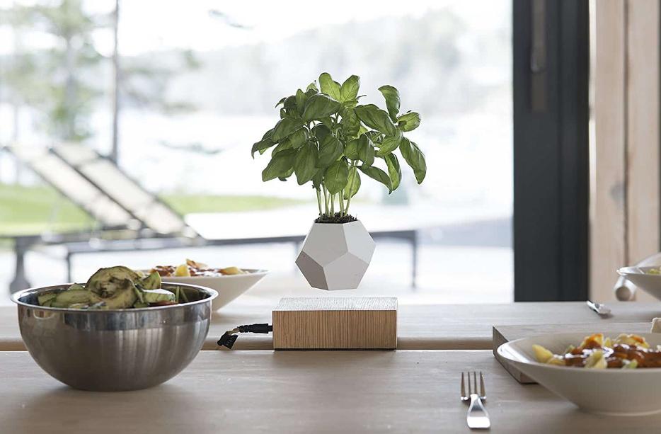 airsai-floating-plant-lifestyle