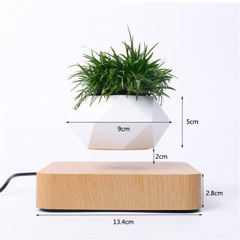 airsai-plant-dimensions