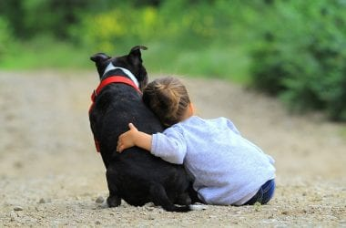 childs-first-pet