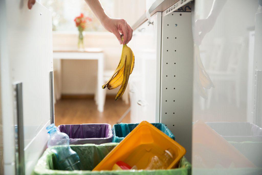 banana-in-food-waste-caddy
