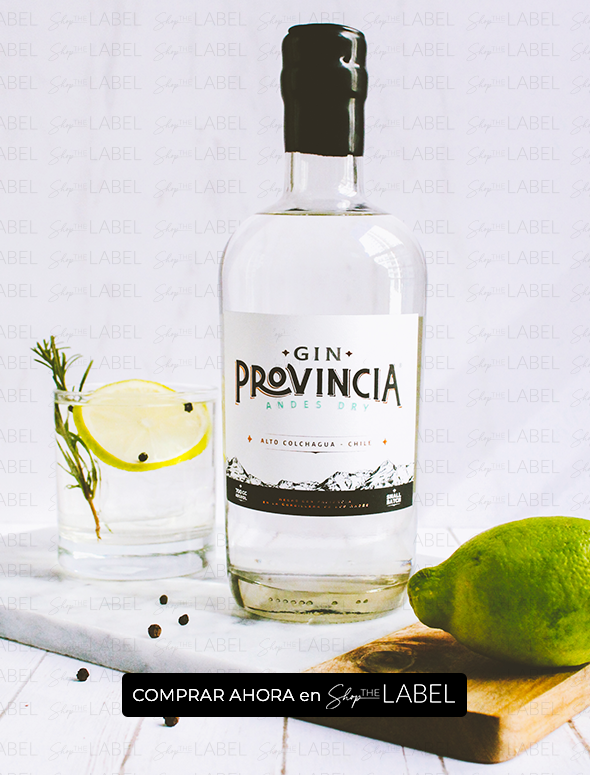 gin provincia andes dry en shop the label despacho a todo chile